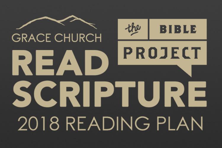 Bible Project Widget